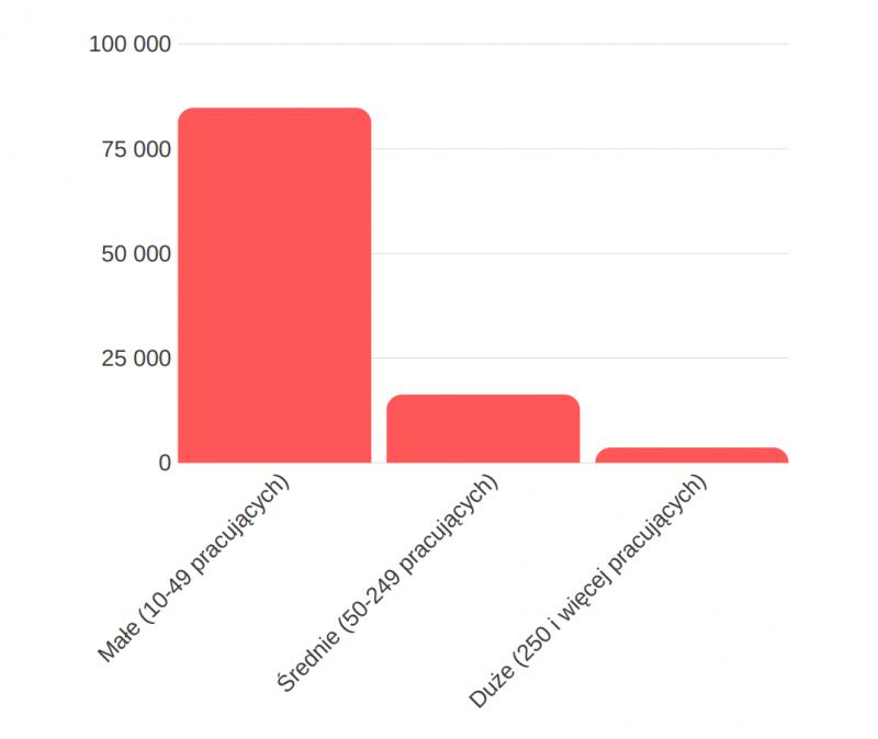 wielkość przedsiębiorstw - internet wfirmach wroku 2018